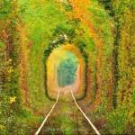 tunel do amor11