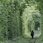 tunel do amor3