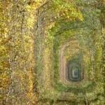 tunel do amor5